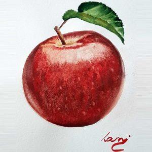 Akvarell tanfolyam - Piros Alma festése