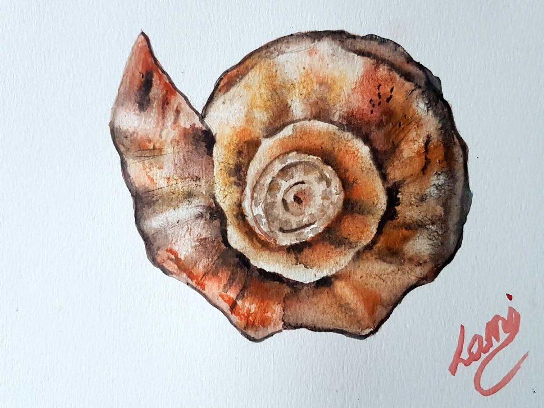 Akvarell tanfolyam - Csiga festése