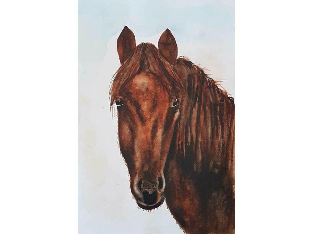 Hogyan fess meg akvarellel egy ló fejet?